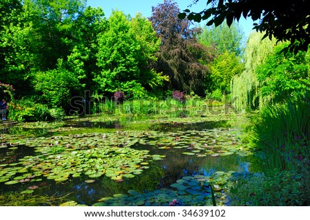 Lily pond in Monet's garden just outside Paris. - stock photo