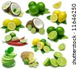 Lime and Lemon Combinations - Sampler with clipping paths - stock vector