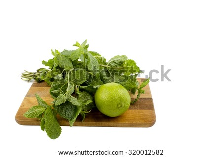 lime mint - stock photo