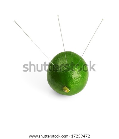 lime with acupuncture needles isolated on white background - stock photo