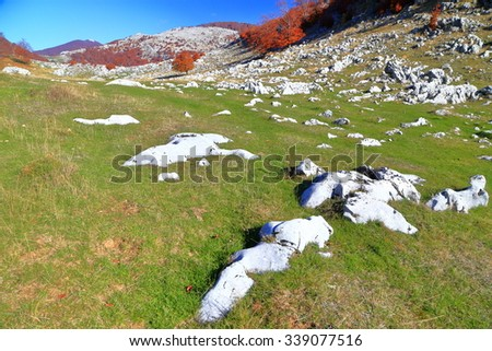 Limestone rocks on a green meadow and distant trees with vegetation in autumn - stock photo