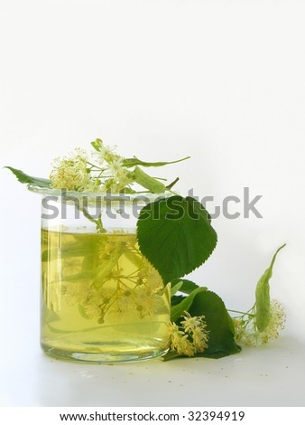 linden flowers as herbal medicine