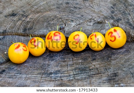 line of lottery yellow plums as winners - stock photo