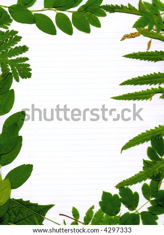 Lined paper framed by natural green leaves background - stock photo