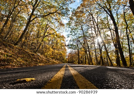 Lines in the middle of the road during Fall. - stock photo