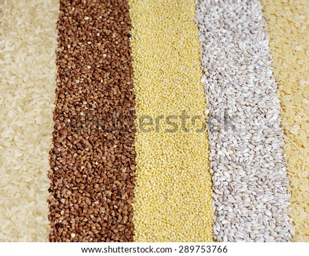 Lines made of cereal grains background