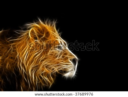 lion illustration - stock photo