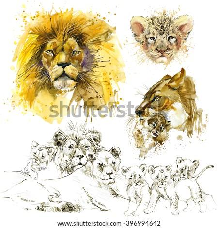Lion pride illustration. Lion watercolor. Lion sketch. Lion family. - stock photo