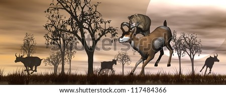 Lioness jumping on an antelope and others running away in the nature by orange sunset - stock photo