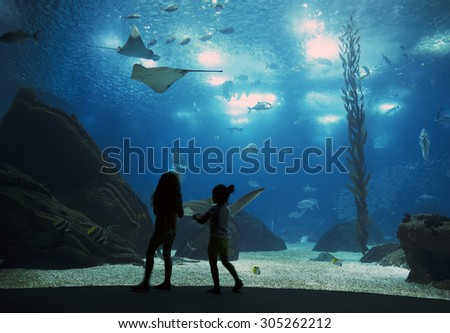 LISBON, PORTUGAL - June 12 2015: Interior view of the Lisbon Oceanario on June 12 2015 Lisbon, Portugal, Europe - stock photo