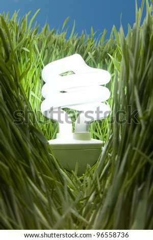 Lit Energy Savings Light Bulb in Grass, blue sky - stock photo