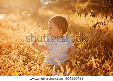 Little adorable chubby baby boy sitting in a white jumpsuit in the field in the spikelets in the warm rays of the setting sun in the summer, looking to the side - stock photo