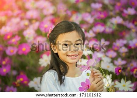 Little asian girl in a cosmos flower garden - stock photo