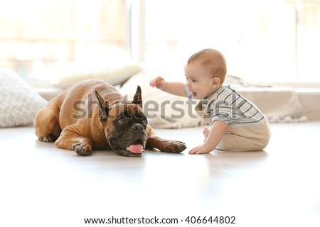 Little baby boy with boxer dog on the floor at home - stock photo