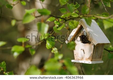 Little Birdhouse in Spring birch leaves - stock photo