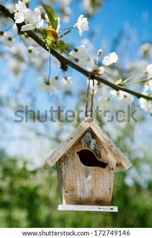 Little Birdhouse in Spring with blossom cherry flower sakura - stock photo
