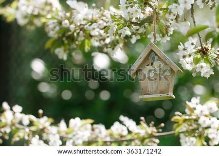 Little Birdhouse in Spring with blossom cherry flower sakura - stock photo