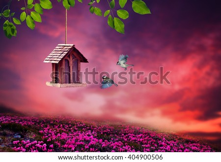 Little Birdhouse in Spring with blossom flower landscape, two birds are flying to their house. - stock photo