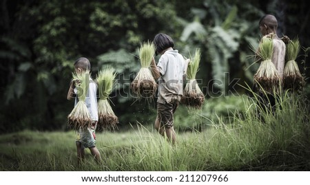Little boy and girl farmer on green fields - stock photo