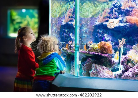 Fish tank stock images royalty free images vectors for Fish tank for kids