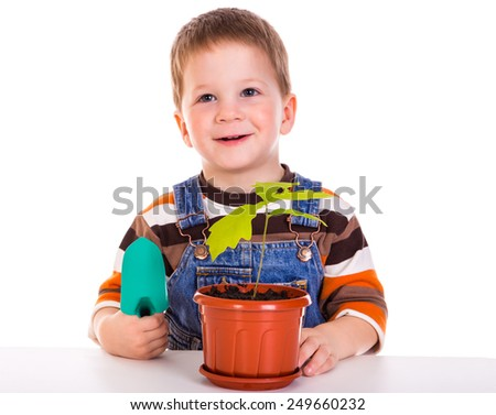 Little boy care plant in the pot, isolated on white - stock photo