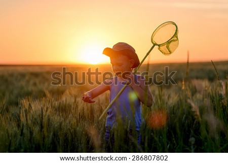 Little boy catching insects at sunset silhouetted against the fiery orange sun in his sunhat holding his insect net - stock photo