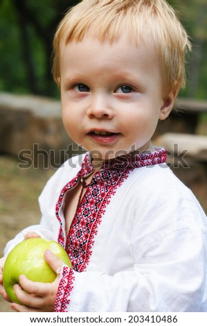 Little boy dressed in ukrainian embroidered costume outdoor - stock photo