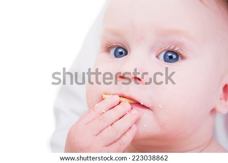 little boy eating cookies isolated on white background