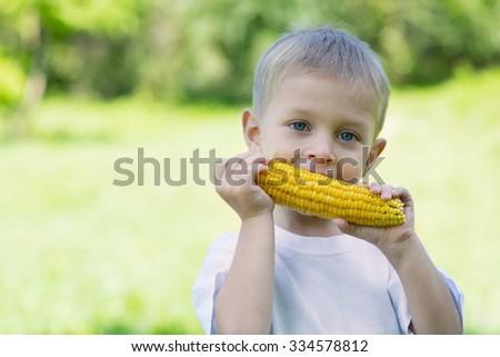 Little boy eating corn outdoors. Summer day. - stock photo
