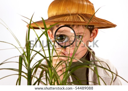 little boy explorer examining small palm tree with magnifying glass - stock photo