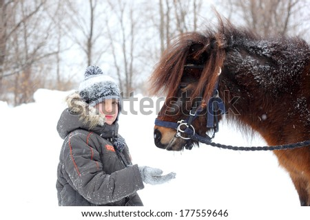 little boy feeding horses outdoors