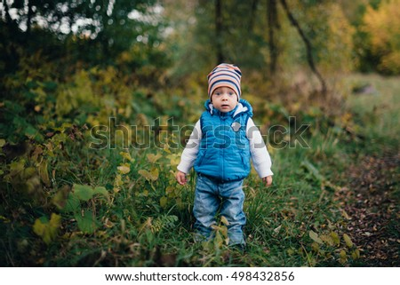 little boy in blue in the autumn forest