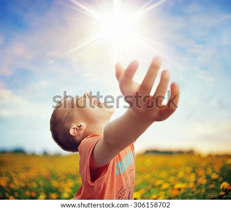 Little boy in flowers field - stock photo