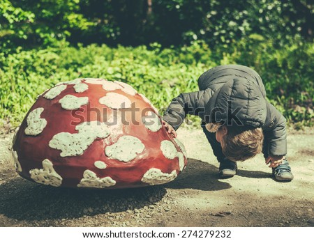 little boy in search for some gnomes under a mushroom - stock photo