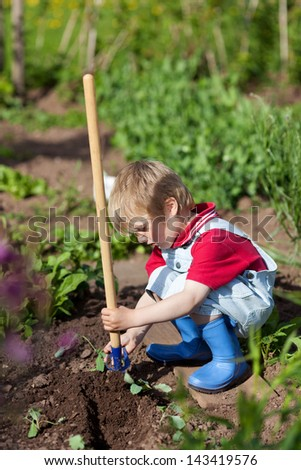 Little boy is planting small plants in the garden - stock photo