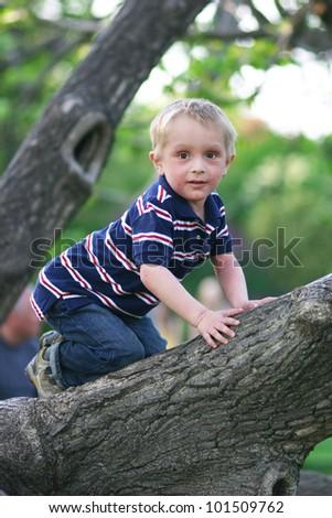 Little boy is sitting on a tree trunk - stock photo