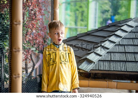 Little boy is surprised in amusement park - stock photo