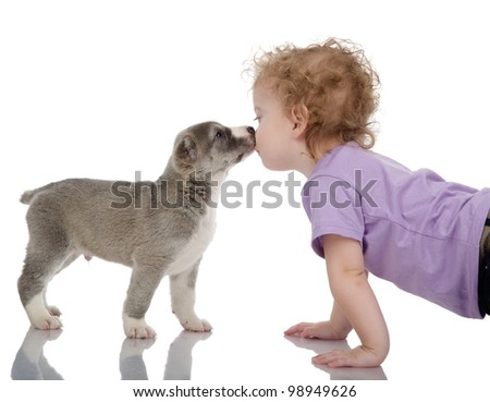little boy kissing puppy dog.  isolated on white background