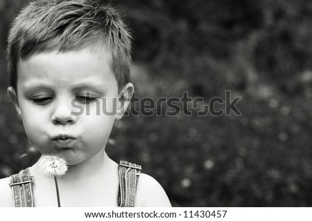 Little boy makes a wish on a dandelion with copy space - stock photo