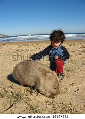 Little Boy Patting Wombat