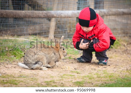 Little boy play with a rabbit in farm - stock photo