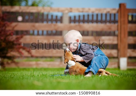 little boy playing with a puppy - stock photo