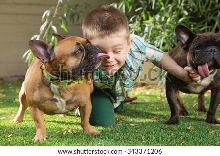 Little boy playing with affectionate of dogs outdoors - stock photo