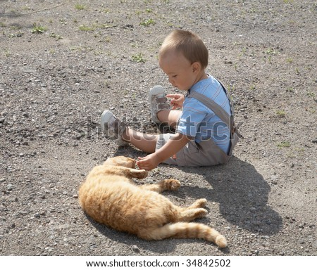 little boy plays with a cat in the afternoon - stock photo