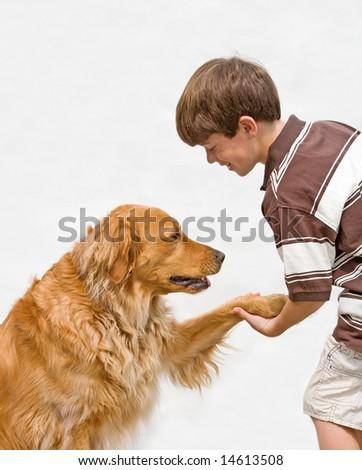 Little Boy Shaking With Dog - stock photo