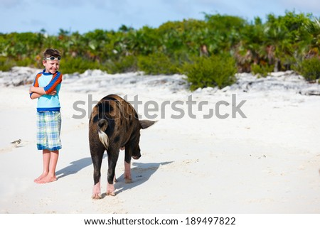 Little boy with a swimming pig of Exuma on a beach in Bahamas - stock photo