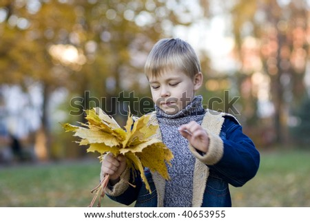 Little boy with autumn leaves - stock photo