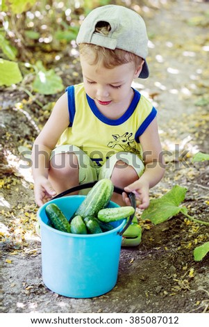 Little boy with cucumbers in a bucket sitting on a bed - stock photo