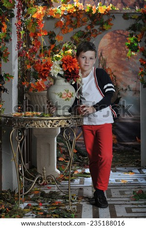 little boy with flowers in the garden in autumn - stock photo
