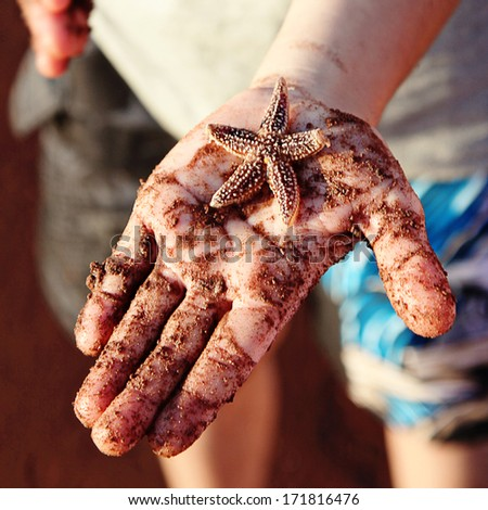 Little boy with Starfish in his hand - closeup - stock photo